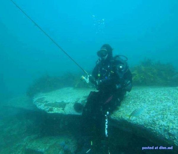 фото приколы подводной рыбалки